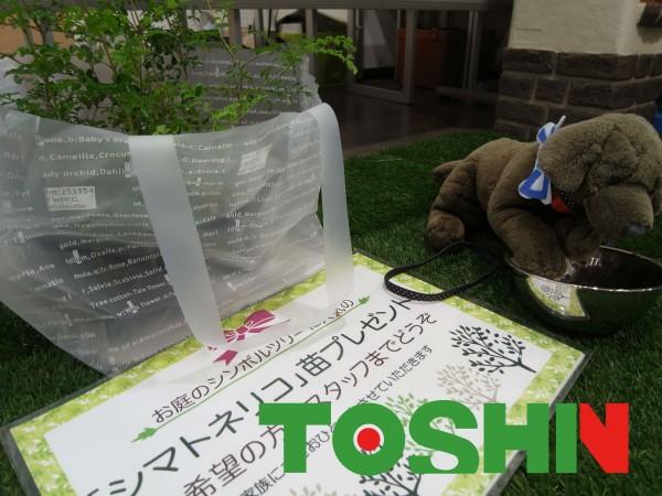 LIXILショールーム お庭のリフォームをする前の解決&相談会開催