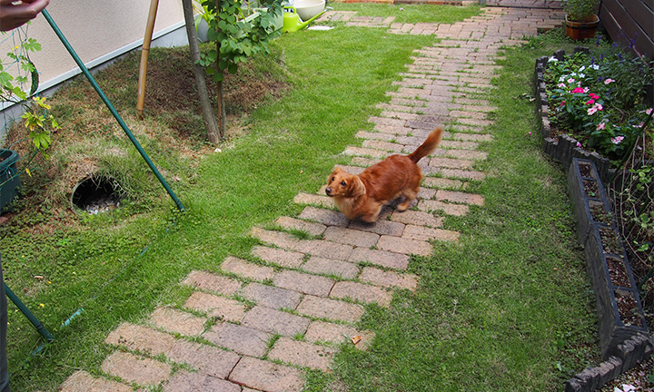 相模原市で庭まわり・ガーデンで使用するレンガ