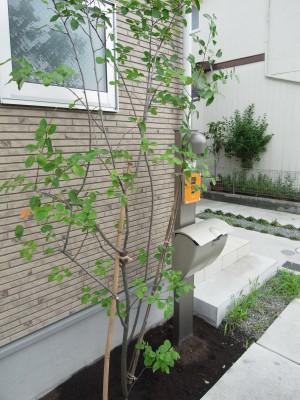 ウッドデッキ「樹ら楽ステージ」と人工芝のお庭 相模原市