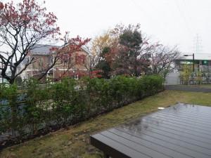 自然石乱形貼りとレンガ敷きの庭